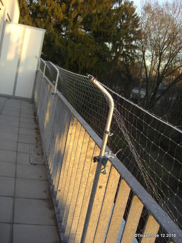 katzensicherheit auf dem balkon katzenschutznetz tinasaugenblicke. Black Bedroom Furniture Sets. Home Design Ideas